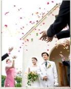 結婚式・披露宴・二次会の代理出席ならダイコーの庭