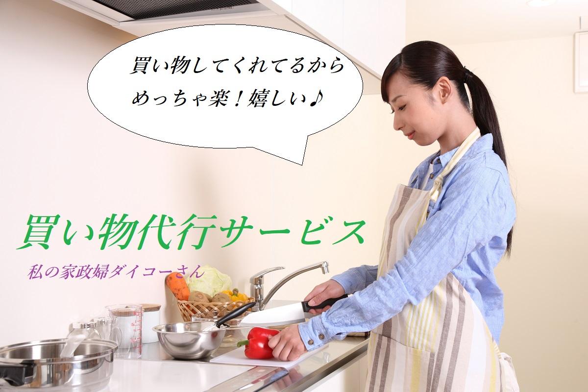私の家政婦ダイコーさん(買い物代行サービス)